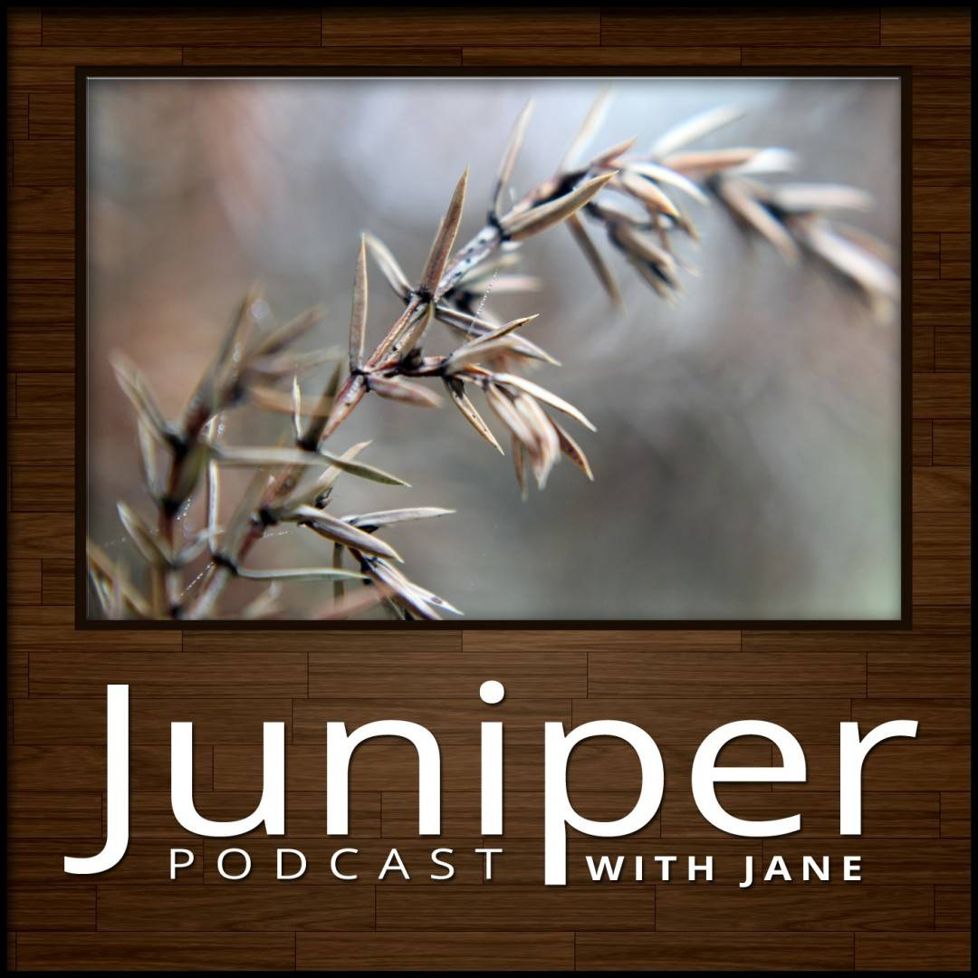 Juniper Podcast Album Art