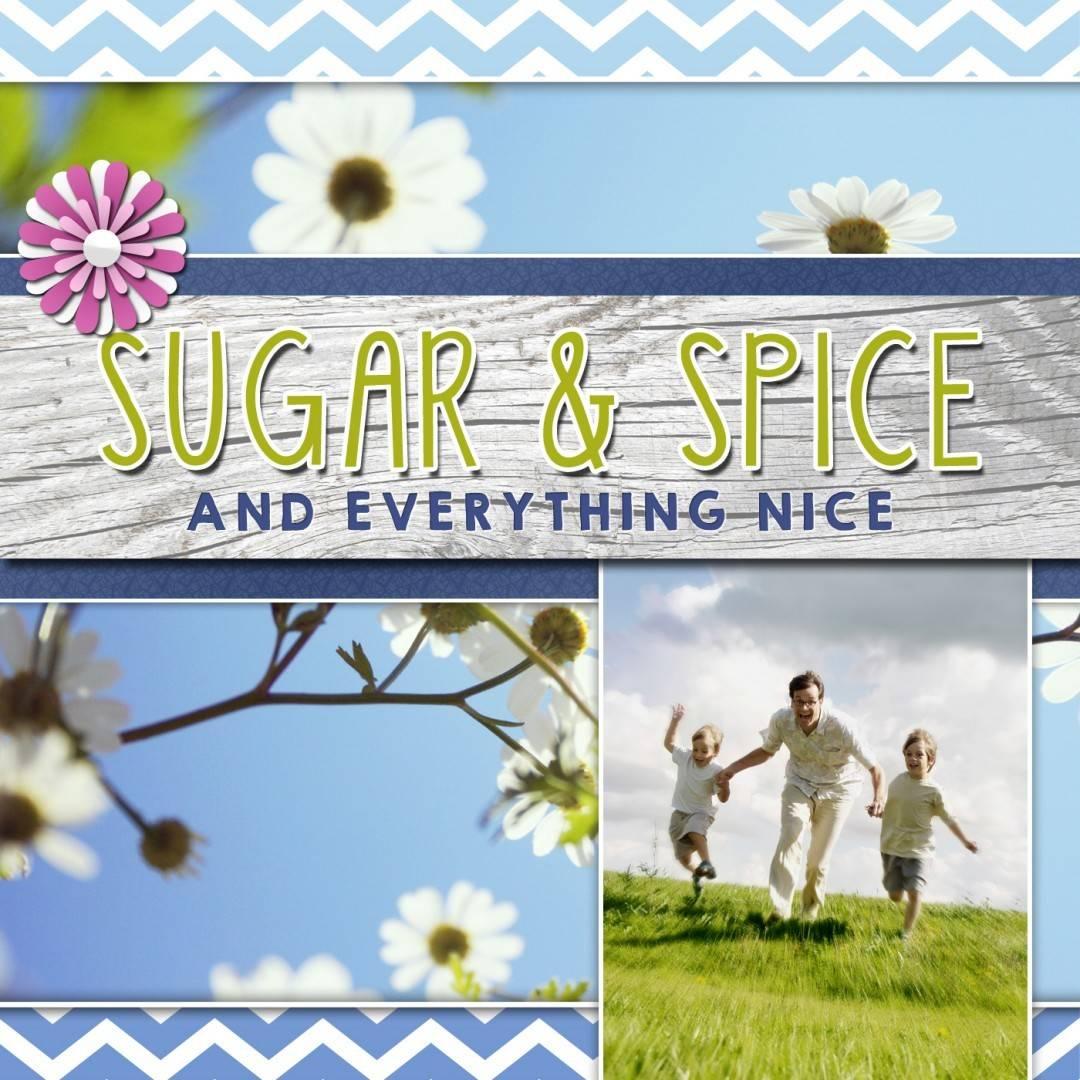 Sugar & Spice Album Art