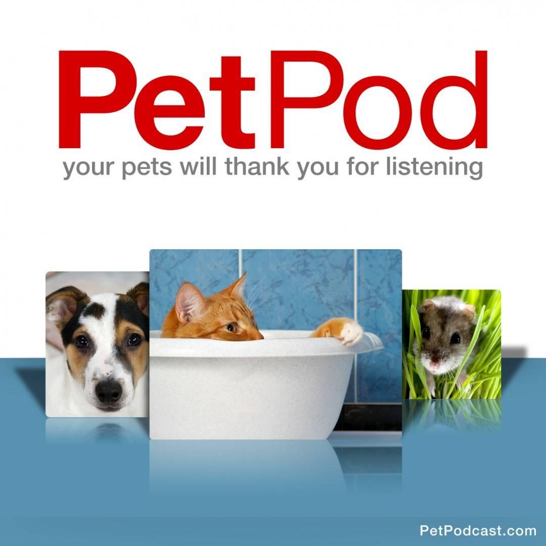 PetPod Album Art